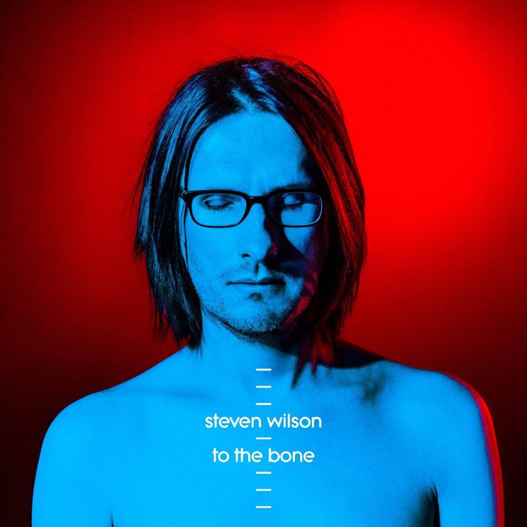 steven wilson album cover